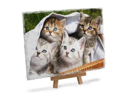 Bild auf Schieferplatte